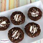 Mint Hot Chocolate Brownies #recipe #brownies #hotchocolate #hotchocolatebrownie #mintbrownie #minthotchocolate #minthotcocoa #hotcocoa #dessert #chocolate