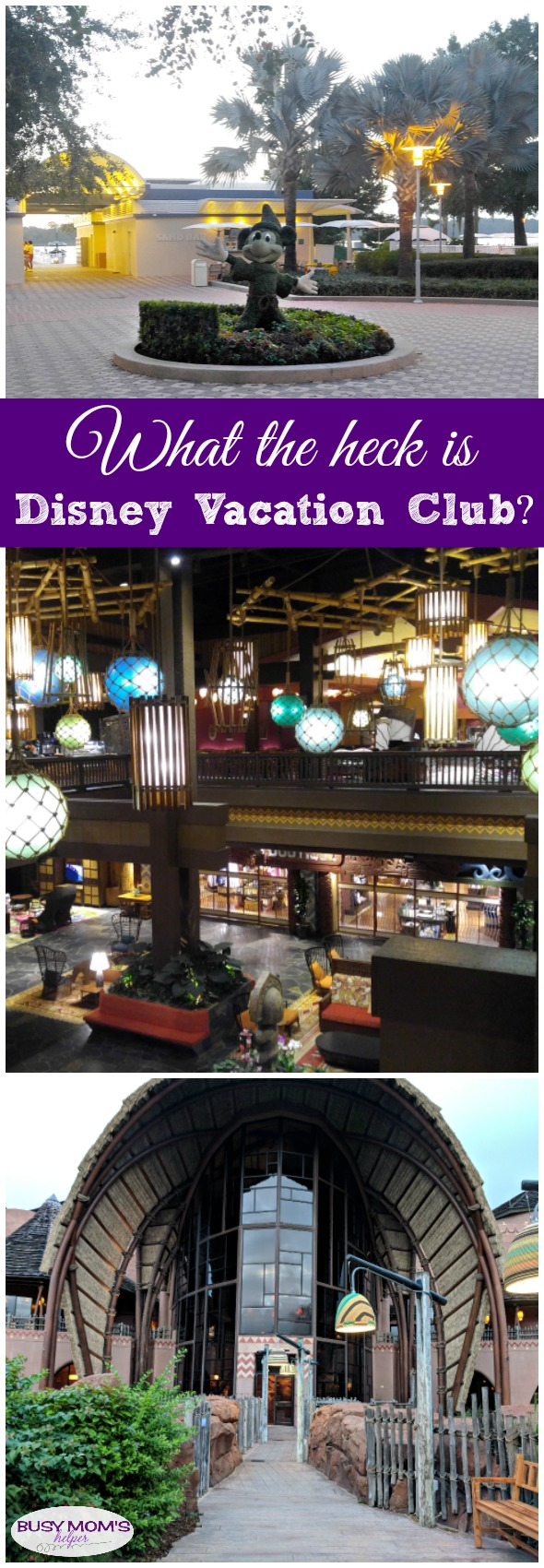 Everything you need to know about Disney Vacation Club aka: DVC #disney #waltdisneyworld #disneyland #hotels #disneyhotels #disneyvacationclub #dvc #disneyparks #travel #familytravel
