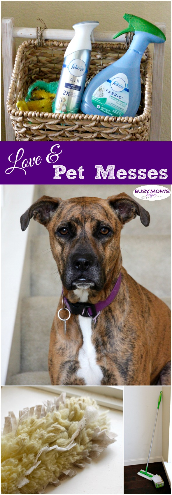 Love & Pet Messes #Sponsored #DontSweatYourPet #SwifferFanatic