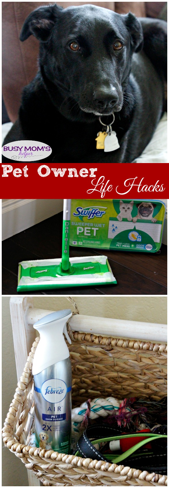 Pet Owner Life Hacks / Great tips for making life with your pet easier #AD #SwifferFanatic #DontSweatYourPet