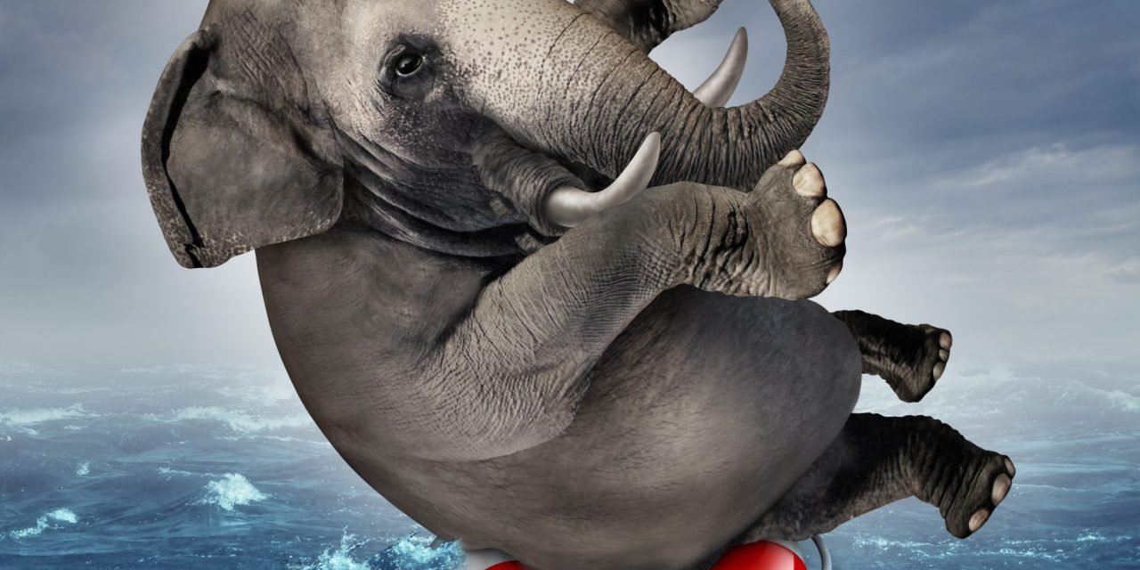 Elephant in the Room: Captioning Math Videos