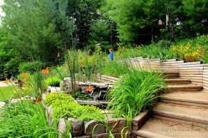 Landscaped tiers containing a variety of garden plants.