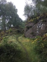 Path to the viewing point