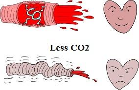 CO2 vasodilaterende buteyko