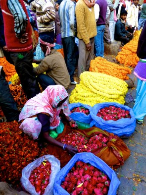 ::wholesale flower market::