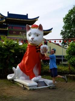 ::kitty kitty Kuching::