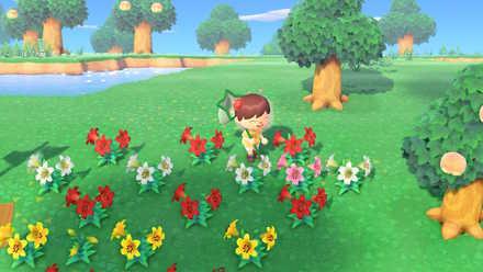 あつ 森 薔薇