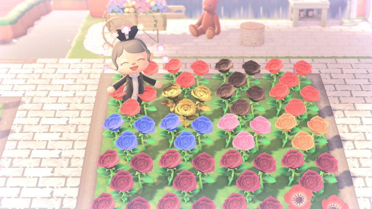 【あつ森】紫バラと黒バラの色の違いがわからない…【あつまれ どうぶつの森】