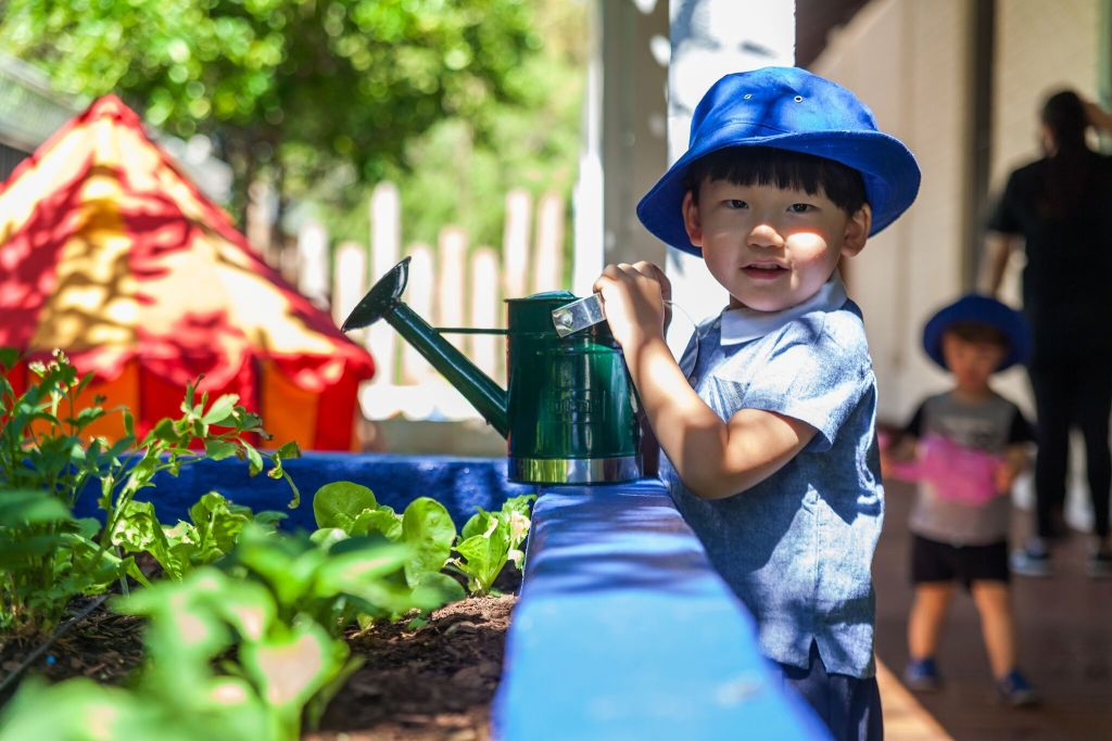 Little Boy watering plants