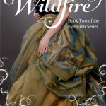 Q&A with J.D. Wright, Wildfire Excerpt & Giveaway