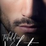 Indie Flutters: Forbidden Valentine by J.C. Valentine