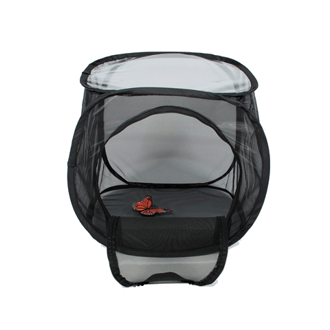 Use YKK Zippers Insect and Butterfly Habitat Cage Terrarium Pop-Up Window 12 X 12 X 12 Inches