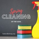 Sponges and spray bottle-spring cleaning