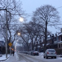Pretty street on the walk to school.