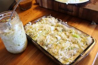 golabki sauerkraut