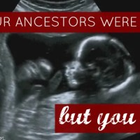 Why your ancestors were fertile... but you aren't.