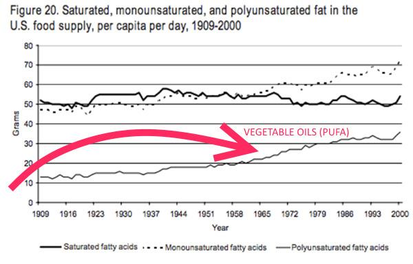 PUFA fats increasing
