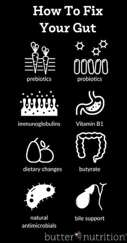 How To Fix Your Gut | Butter Nutrition