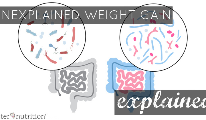 Unexplained Weight Gain Explained   Butter Nutrition