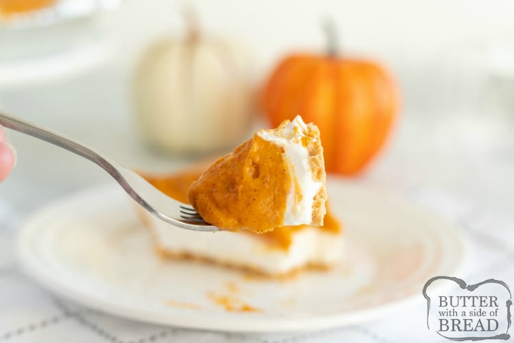 Bite of easy pumpkin pie recipe