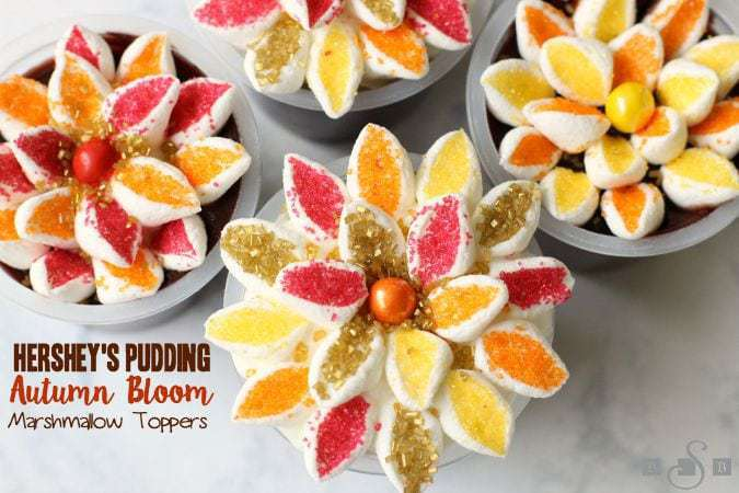 Hershey's Pudding Autumn Bloom Marshmallow Toppers - Butter With A Side of Bread