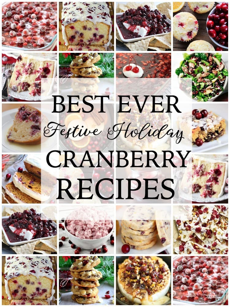 Cranberry recipes both sweet & savory, perfectly festive and delicious for the holidays. Easy to make cranberry recipes bursting with flavor.