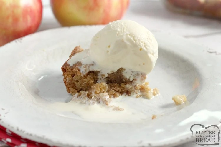 Easy Cinnamon Apple Cake is made with graham cracker crumbs, apples and just three other basic ingredients! This apple cake recipe is so moist and delicious that no one will believe how easy it is to make!