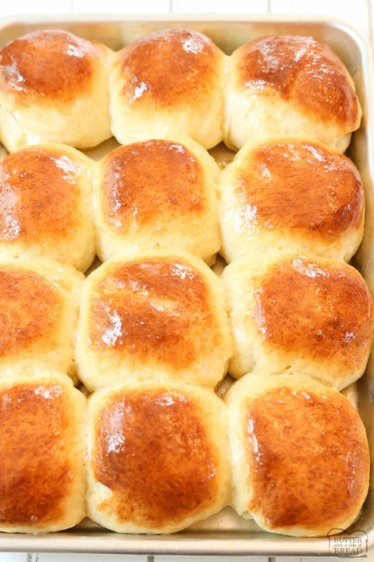 baked dinner rolls on a pan
