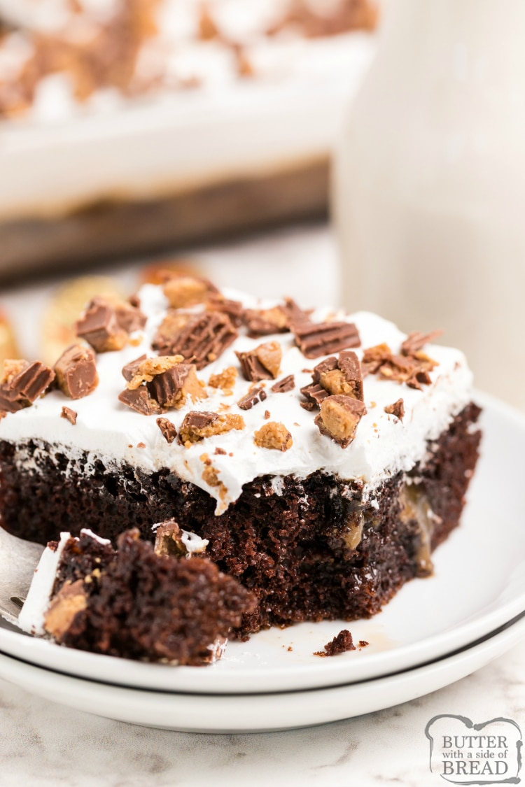 Chocolate Caramel Peanut Butter Poke Cake made with a cake mix, chopped Reese's peanut butter cups and a delicious homemade peanut butter caramel sauce. Decadent but easy chocolate cake recipe!