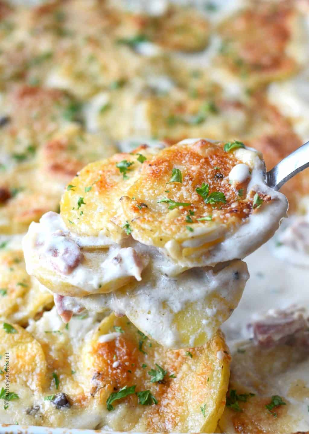 Parmesan Scalloped potatoes and ham scoop