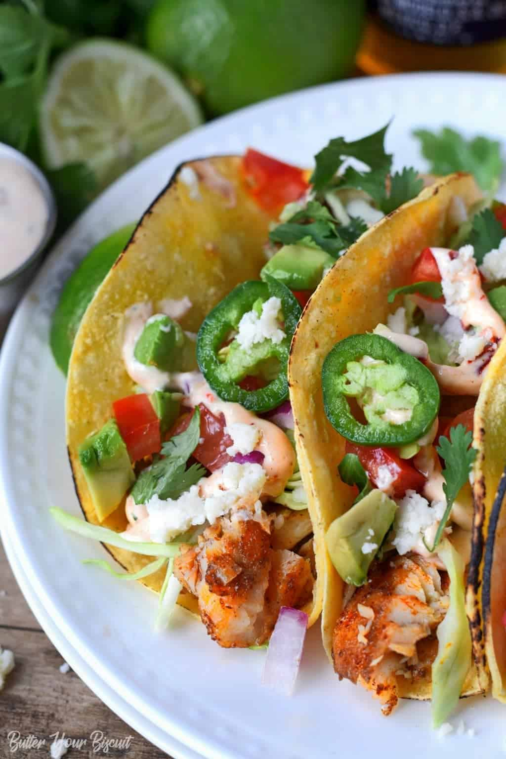 Tilapia fish tacos on a white plate