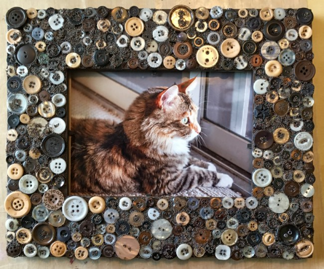 Love Your Pet in Our Pet Button Frame!