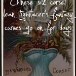 69 Sexy Haiku: Silk corset