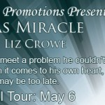 Vegas Miracle: An excerpt + #giveaway from Liz Crowe