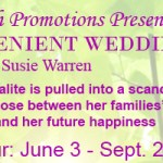 The Convenient Wedding: An interview with Susie Warren