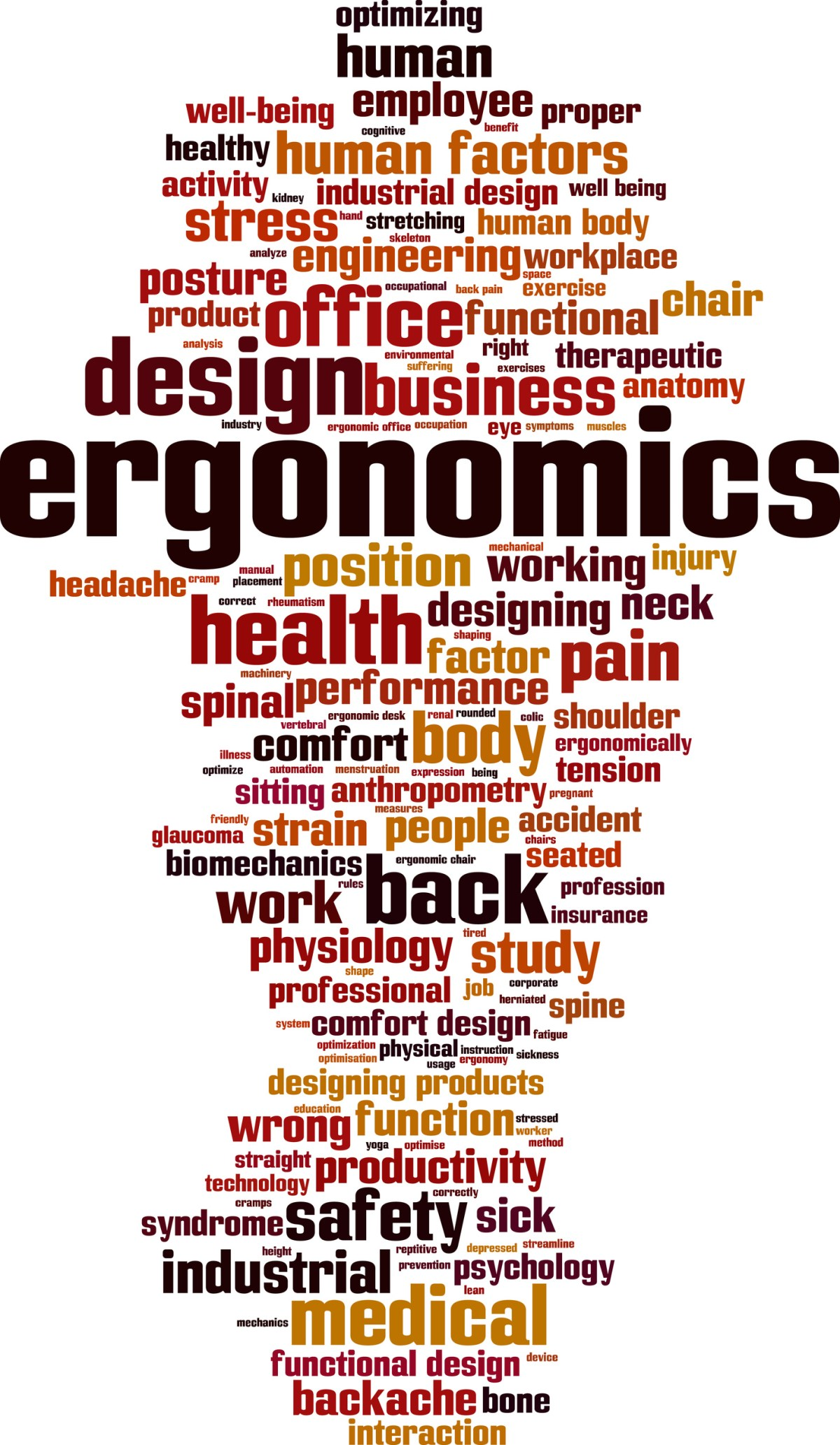 Words associated with ergonomics