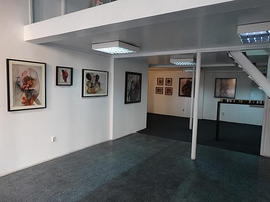 Sarajevo - Izlozba Dijane Lazovic - 2