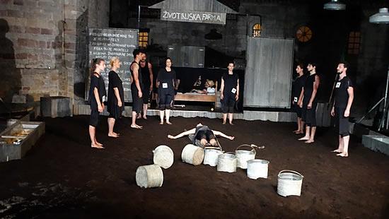 Predstava Zivotinjska farma - 11