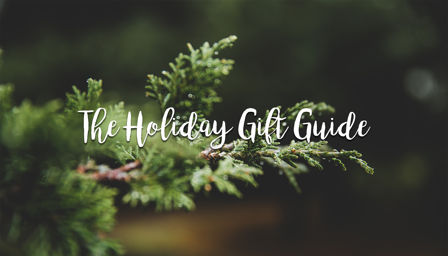 holiday gift guide by but what should i wear