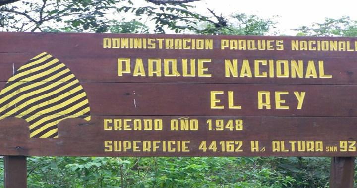 Presupuesto 2019: El ajuste también llegó a los Bosques Nativos
