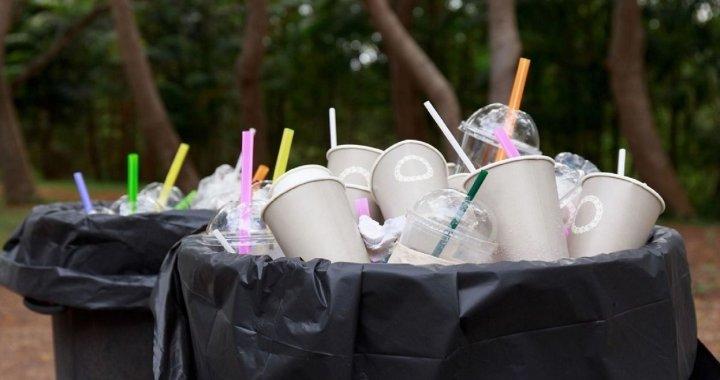 Diputados y Concejales contra las «pajitas»: avanzan leyes para reducir el uso de plásticos