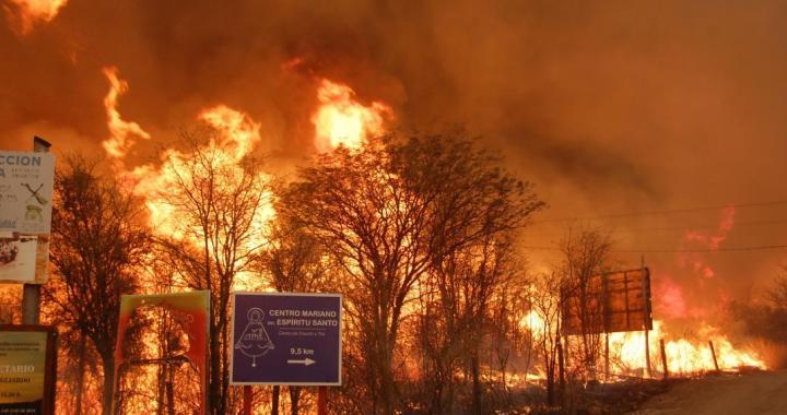Ley de Fuego: se aprobó la prohibición de cambios en el uso y destino de tierras incendiadas