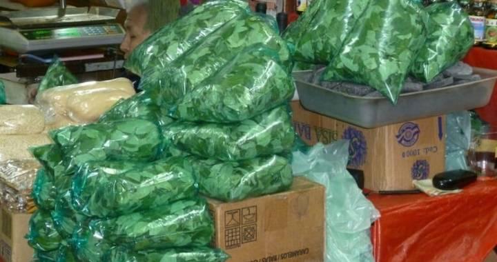 Incautan 60 kilos de hojas de Coca en Los Blancos