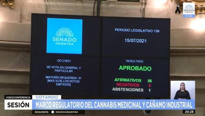 El senado da media sanción a la ley de cannabis medicinal y cáñamo industrial