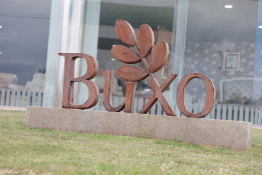 buxo-empresa