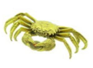 Brass Crab Biting Auspicious Coin