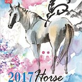Fortune and Feng Shui Forecast 2017 for Horse