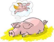 chinese-zodiac-boar.jpg