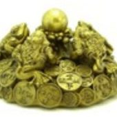 Brass Five Good Fortune Money Frogs