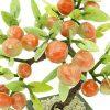Fruitful Peach Tree Of Immortality4